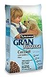 Nutrena Gran Forma Dog Cuccioli (Puppy) kg.15