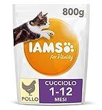IAMS for Vitality Cibo Secco con Pollo Fresco specifico per Gattini, 800 g