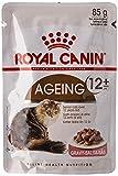 Royal Canin Ageing +12 - Cibo Umido per Gatti, Confezione da 12 (12 x 85 g)