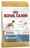 royal canin, Multicolore, Boxer Junior Secco Cane kg. 12-Mangimi Secchi per Cani Crocchette, Unica, 12000 unità