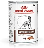 Royal Canin Vet Diet Gastro Intestinale Basso Grasso Canino Bagnato 12x410g (4,92kg) (confezione da 2)