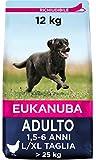 Eukanuba Cibo Secco per Cani Adulti di Taglia Grande, Ricco di Pollo Fresco, 12 kg