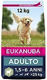 Eukanuba Cibo secco per cani per cani adulti attivi di taglia grande, ricco di agnello e riso - 12 kg