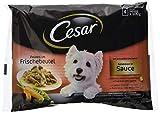 Cesar Le Delizie del Giorno Cibo per Cane Selezione in Salsa 4 x 100 g - 13 Confezioni (52 Bustine in totale)