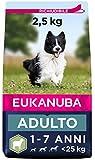Eukanuba Cibo secco per cani per cani adulti attivi di taglia piccola e media, ricco di agnello e riso, 2,5 kg