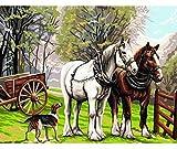 DINGQING Nuovi Quadri per Adulti e Bambini con Quadri digitali-Cavalli della Fattoria e Cani su Animali-Quadri digitali su Tela