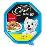 Cesar Senior Pollo e Riso - 2100 gr