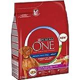 Purina OneMedium/Maxi Crocchette per Cani Adulti Medium/Maxi 10kg, Ricco in Manzo con Riso, 4 Sacchi da 2.5 kg Ciascuno