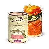 Terra Canis Salmone, miglio, pesca & erbe aromatiche - Alimento umido Classic, 400g I Alimento premium per cani con ingredienti di autentica qualità human-grade al 100% I Gluten-free