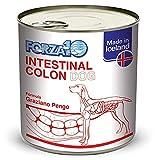 SANYPET FORZA10 - Intestinal Colon Dog - 312 gr