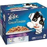 Purina Felix Le Ghiottonerie Umido Gatto Le Preferite con Manzo/Pollo/Salmone e con Tonno, 60 Buste da 100 g Ciascuna (6 confezioni da 10 X 100 g)