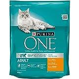 Purina One Bifensis Crocchette Gatto Adult Ricco in Pollo e Cereali integrali, 8 Confezioni da 800 g Ciascuna, Peso Totale 6,4 kg