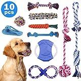Set di Giocattoli per Cani, Minterest 10 Pezzi Giocattoli di Rafforzato Corda da Masticare per Cuccioli Cani di Taglia Media e Grande, Cane Interattivo Giocattoli Non tossici per la Pulizia dei Denti