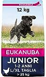 Eukanuba Cibo Secco per Cani Giovani in Fase di Sviluppo, per Cani di Taglia Grande, Ricca di Pollo Fresco 12 kg