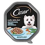 Cesar Scelta dello Chef Cibo per Cane con Pesce Bianco, Verdure e Riso Integrale 150 g - 14 Vaschette