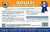 Vet Line Adulti Monoproteico al Pollo kg.12,5