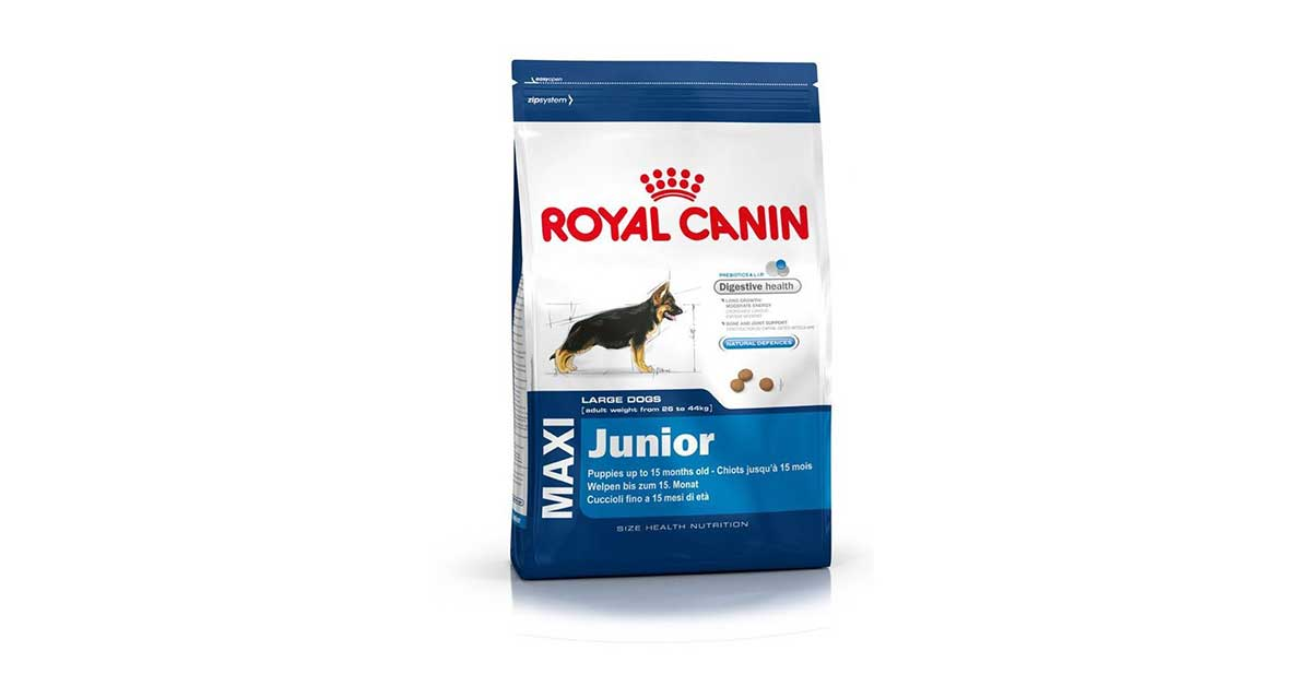 You are currently viewing Royal Canin – Maxi Junior crocchette cani Raza grande