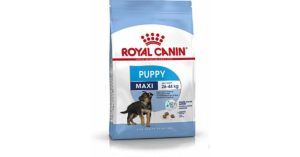 royal canin Alimento Cane Maxi Junior – 4000 gr